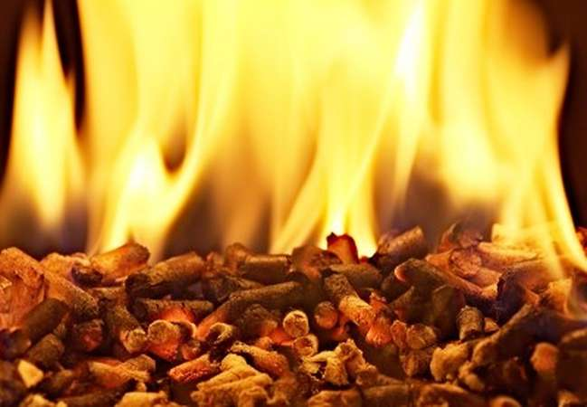 Wood biomass combustion